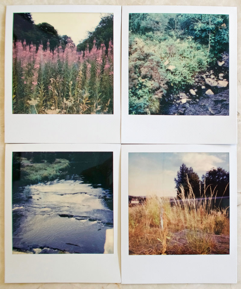 Summer Polaroids by O Dean